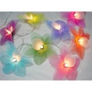 Cattleya mixed colour string light