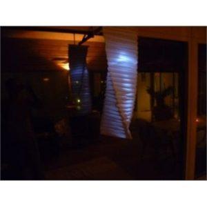 Twisting Chinese Lantern ( 10 )